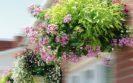 Suspension florale Sifu - Mobilier de fleurissement Signaux Girod