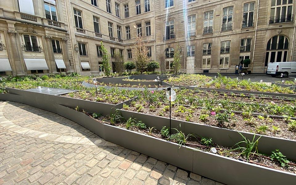végétalisation de la place Vendôme Atech